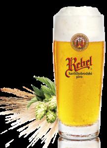 rebel tradicni piwo